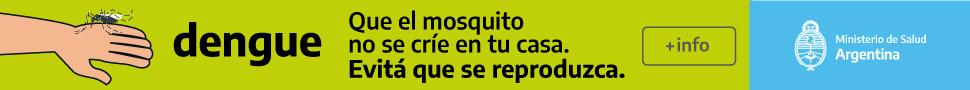 Dengue | Que el mosquito no se crie en tu casa
